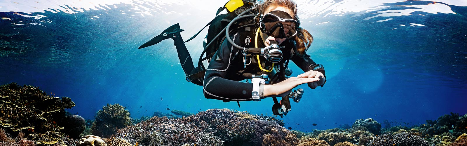 reserveer jouw duikopleiding in den Haag