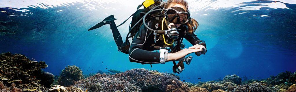 leren duiken middels een PADI of SSI duikcursus in den Haag